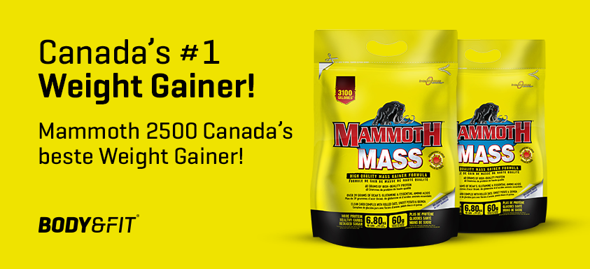 mammoth-mass-canadas-#1-weight-gainer